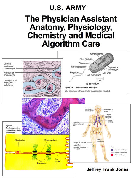The Physician Assistant Anatomy, Physiology, Chemistry and Medical Algorithm Care
