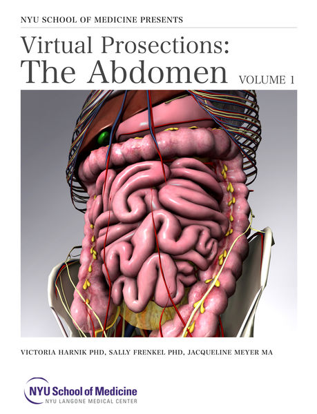 Virtual Prosections: The Abdomen Volume 1