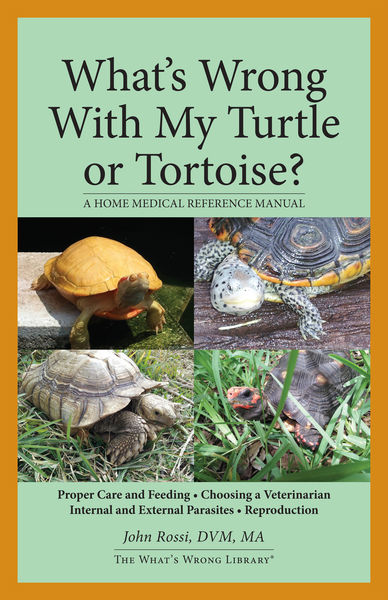 What's Wrong With My Turtle or Tortoise?