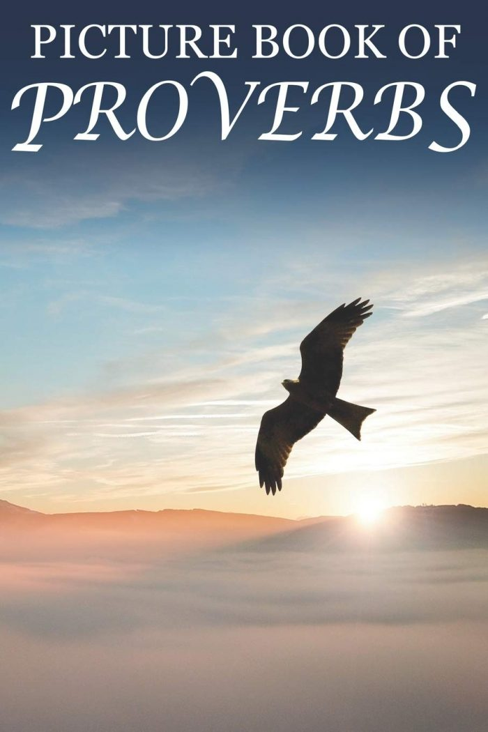 Picture Book of Proverbs: For Seniors with Dementia [Large Print Bible Verse