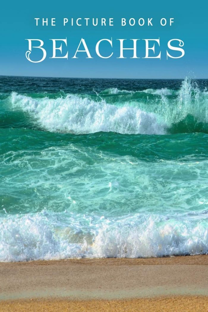 The Picture Book of Beaches: A Gift Book for Alzheimer's Patients and Seniors
