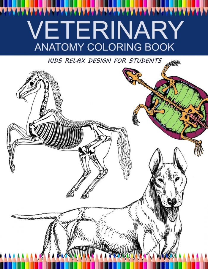 Veterinary Anatomy Coloring Book: kids relax design for students: younger kids